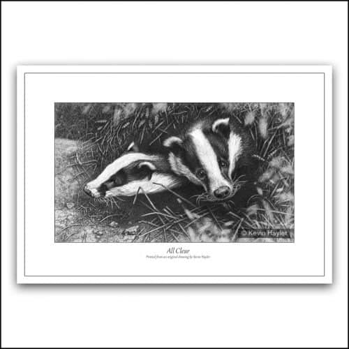 Two badgers emerging from a sett