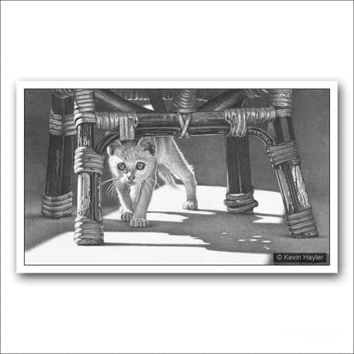 white kitten under a chair pencil drawing
