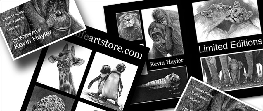 Advertise your work with cards and flyers samples