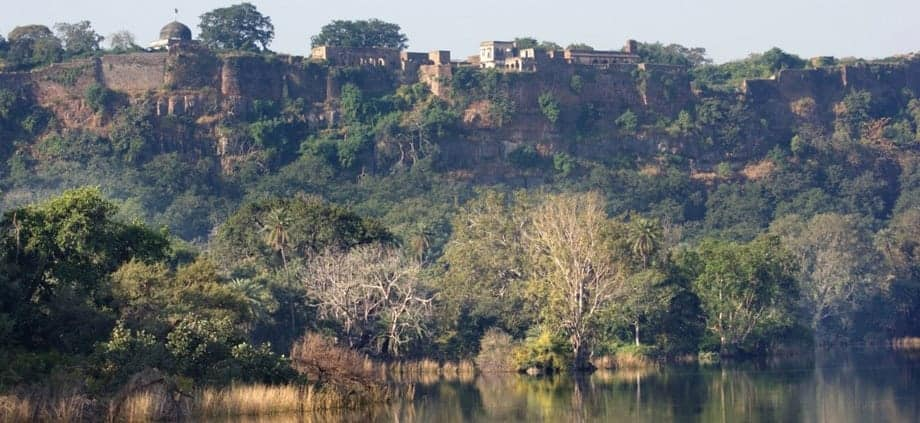 Ranthambore fort skyline. One of the best parks for finding wild tigers on a budget