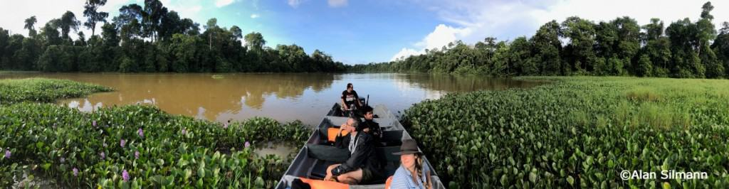 Wildlife watching in Asia header image. Kevin Hayler on the Kinabatangan river. Oxbow lake by drone