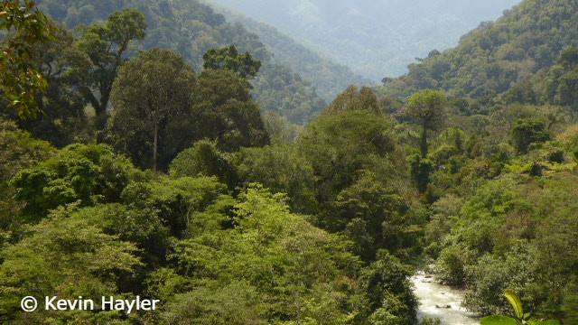 Look out point above Leuser Ketambe Guest House in Gunung Leuser National Park