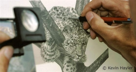 Artist getting ideas. Kevin Hayler drawing from his own photo
