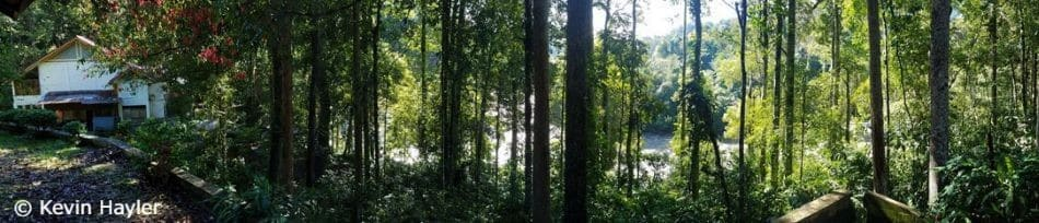 View of the Gurah River from the balcony of our lodgings in Gunung Leuser National Park