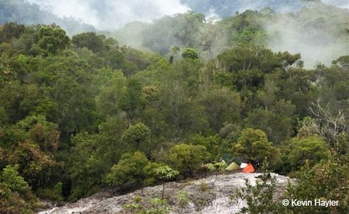 How to Plan a Wildlife Photography Trip. The Kapi Plateau in Gunung Leuser National Park