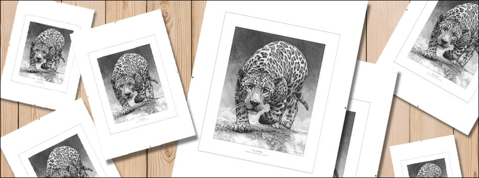 how do artists make prints to sell. A selection of various prints