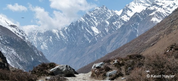 Above the tree line in the high Himilaya. The Langtang trek in Nepal
