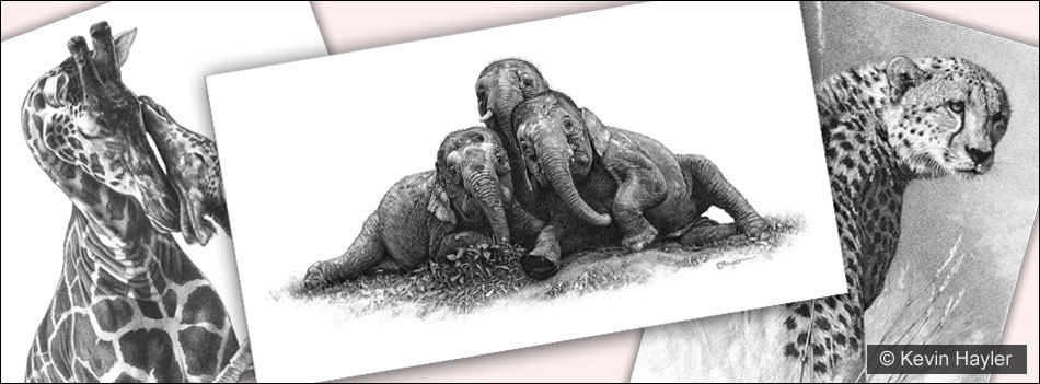 9 Selling Skills every artist should know. Three drawings, giraffes, a cheetah and pygmy elephants