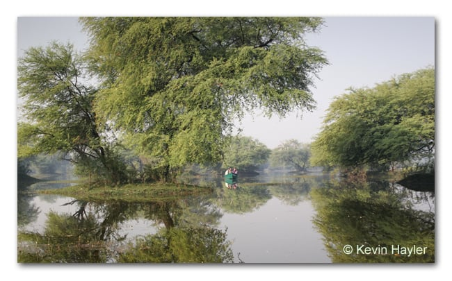 Boating around Kaleodeo National Park after the monsoon in India. Flooded landscape with tree islands and reflections. Very affordable travel