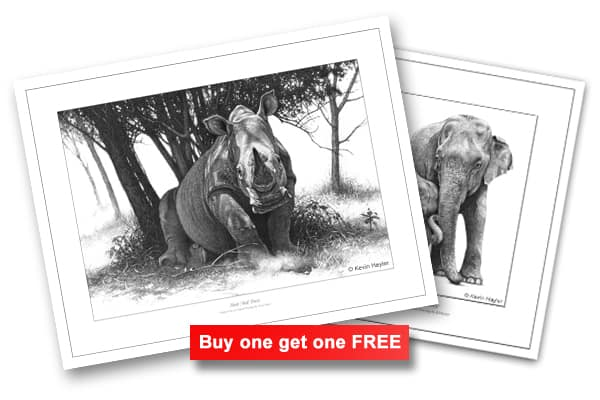 Another how to bargain tip. Buy one get one free offer. Two more prints with a sign.