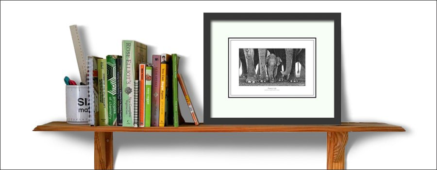 A framed picture of a herd of elephants on a bookshelf