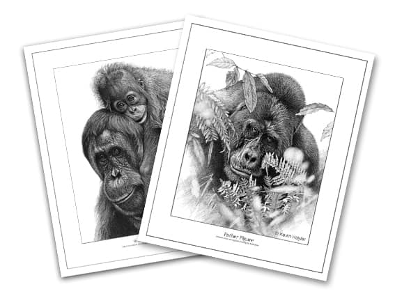 how to negotiate your art print prices using a multi-buy discount. Two prints shown as an example