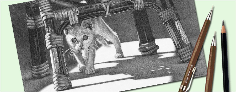 How to draw realistic shadows. Drawing of a kitten and shadows