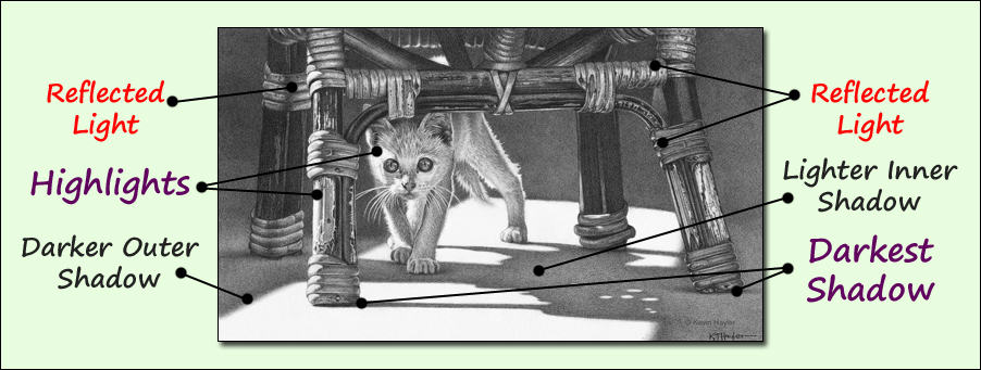 Diagram showing how to draw realistic shadows. A cat drawing.