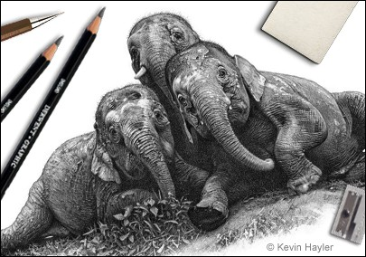 Drawing tips header. Pencil drawing of elephants with drawing materials