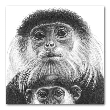 Monkey drawing showing how to make white lines in a pencil drawing  by indenting the paper