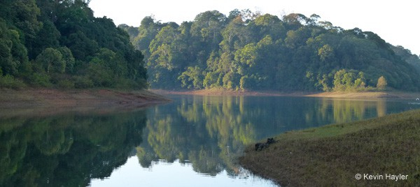 Wildlife photography in india. Periyar reservoir from one of the walking trails.