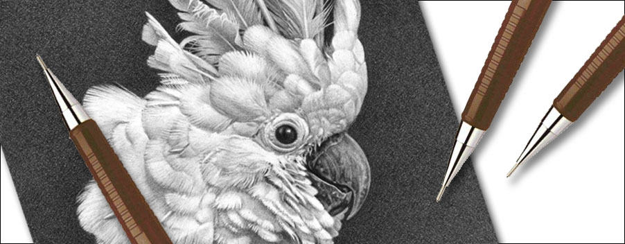 can you draw with mechanical pencils feature image