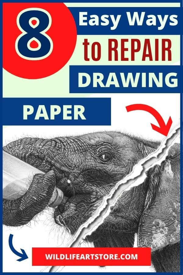 how to repair damaged drawing paper. Image of a ripped pencil drawing for Pinterest