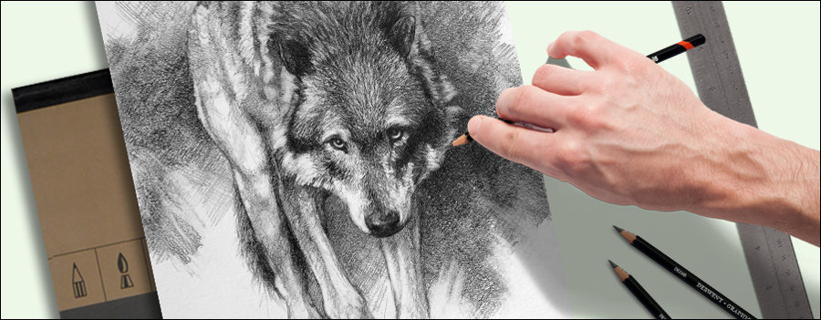 drawing wildlife. A wolf drawing with art supplies.