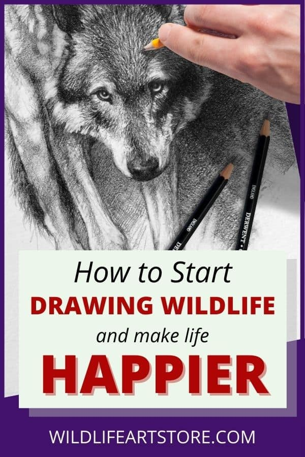 How to start drawing wildlife and make life happier for Pinterest