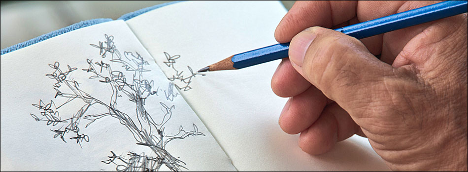is it too late to learn how to draw header. Old hand drawing a tree in a sketch book