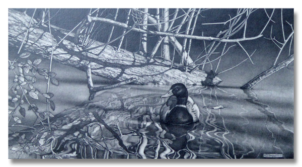 Drawing of a mallard on a duckpond highlighting the problem with graphite shine